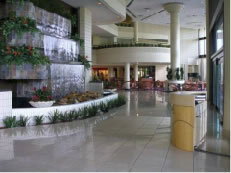 crown plaza4 - Case Study: Crowne Plaza Tampa East