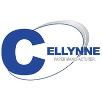 Case Study: Cellynne Paper Corporation