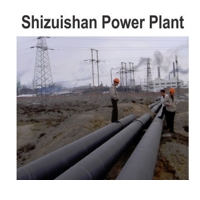 Case Study: Shizuishan Power Plant