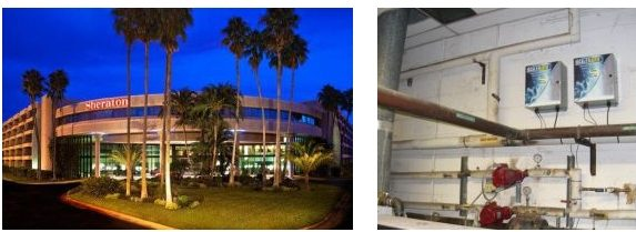 image08221130414 e1470709329938 - Case Study: Sheraton Tampa East