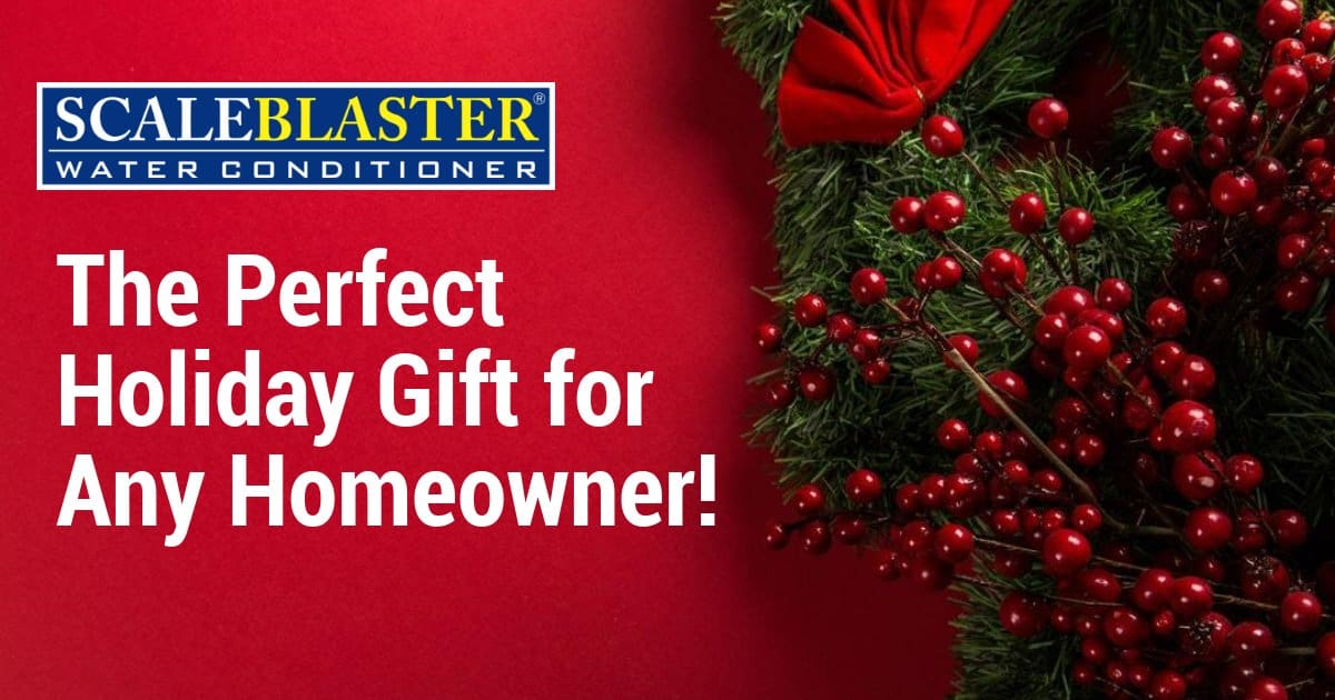 Gift for Any Homeowner - ScaleBlaster –The Perfect Holiday Gift for Any Homeowner!