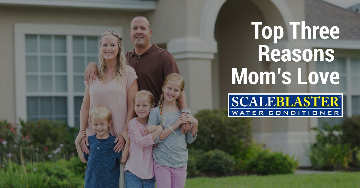 Moms Love Scaleblaster - Top Three Reasons Mom Loves ScaleBlaster
