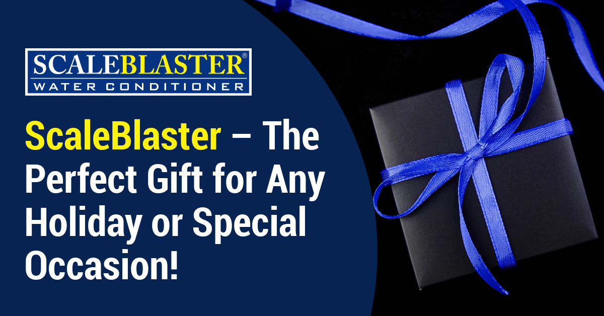ScaleBlaster – The Perfect Gift for Any Holiday or Special Occasion!