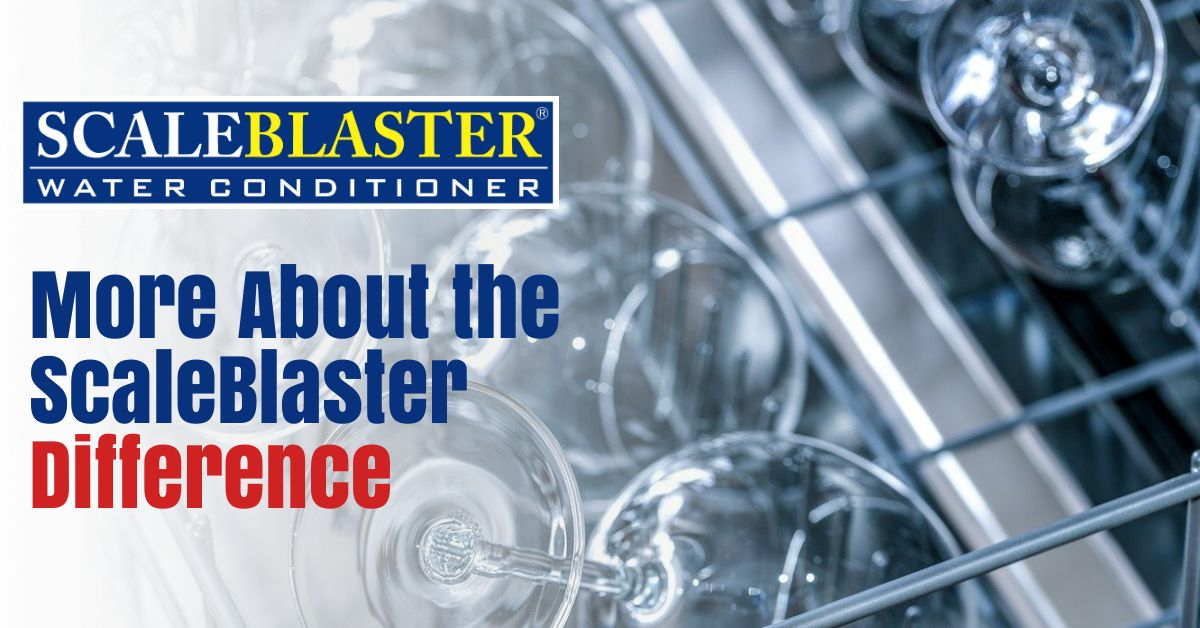 More About the ScaleBlaster Difference - More About the ScaleBlaster Difference