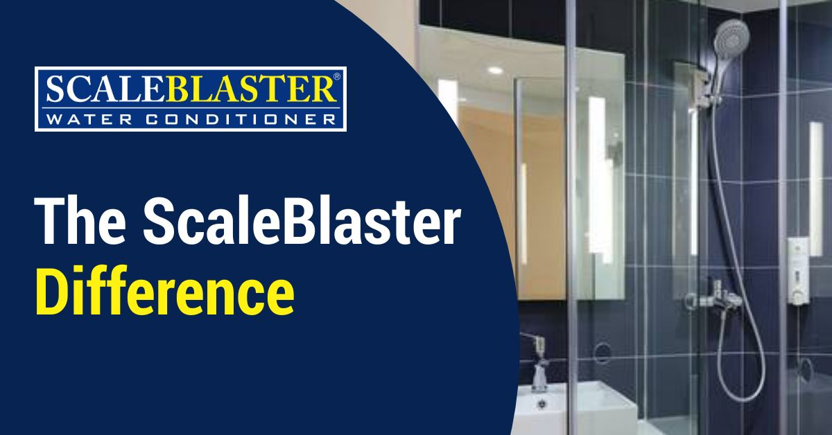 ScaleBlaster Difference - The ScaleBlaster Difference