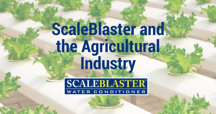 ScaleBlaster and the Agricultural Industry 710x375 - News