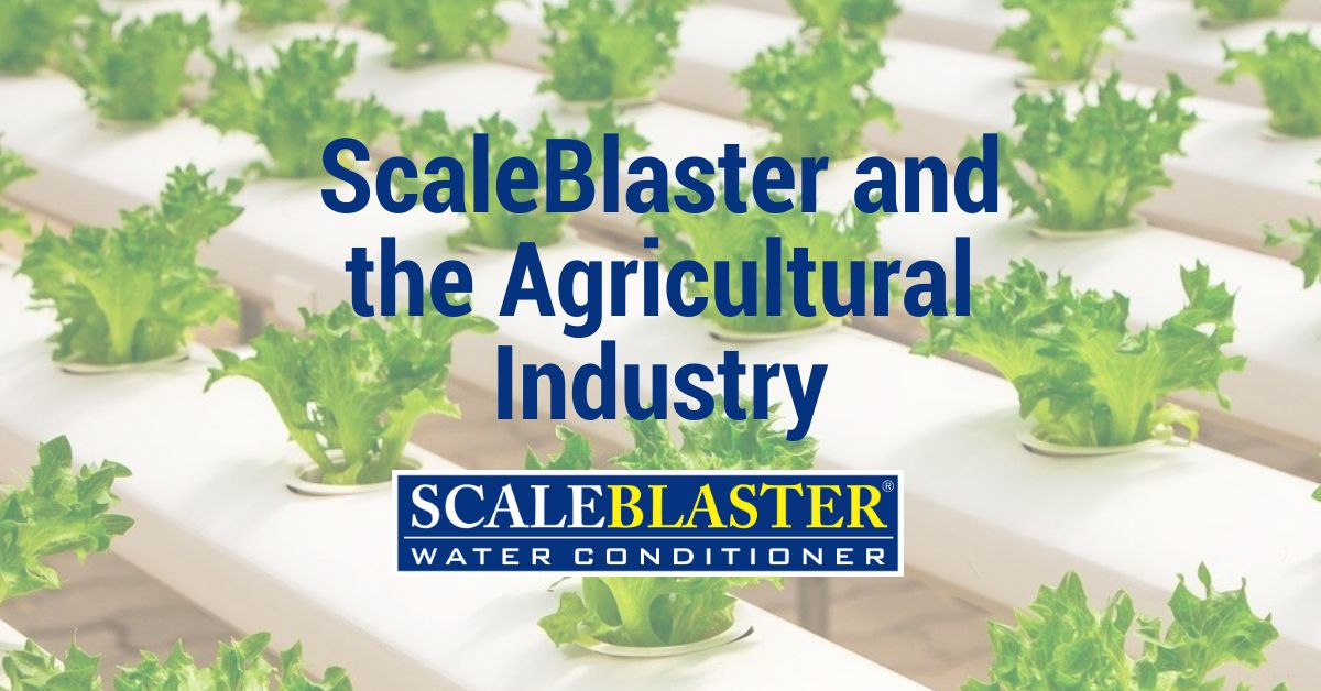 ScaleBlaster and the Agricultural Industry - ScaleBlaster and the Agricultural Industry