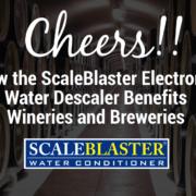 Electronic Water Descaler