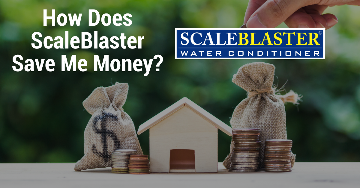 How Does ScaleBlaster Save Me Money - How Does ScaleBlaster Save Me Money?