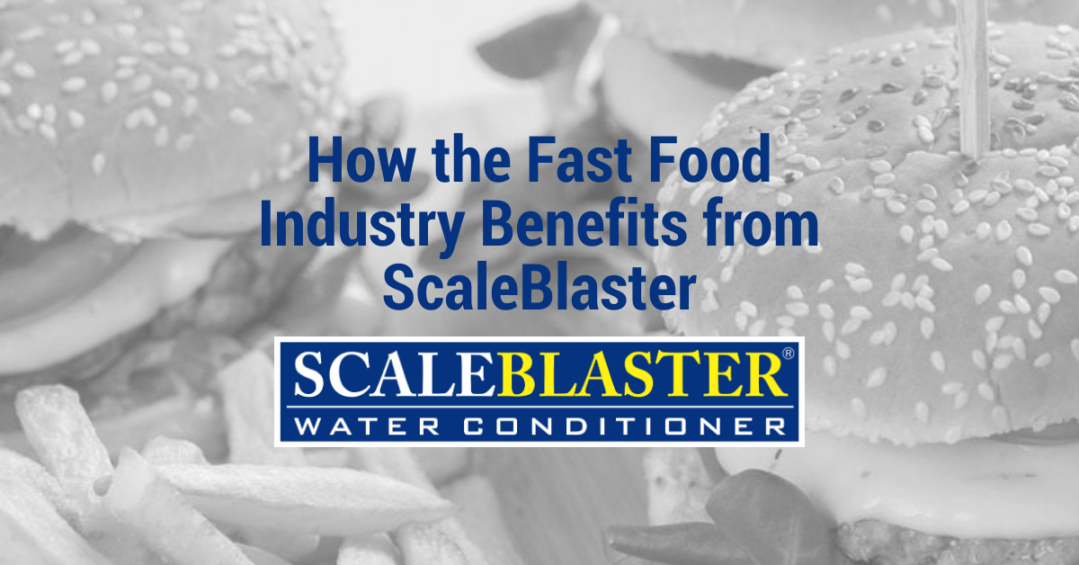 How the Fast Food Industry Benefits from ScaleBlaste - How the Fast Food Industry Benefits from ScaleBlaster